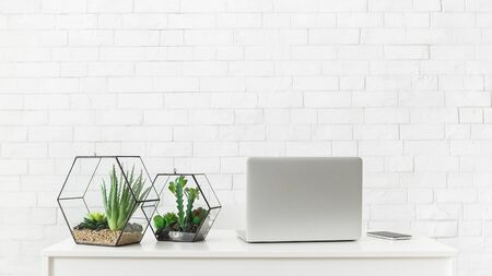 Photo for White desk with laptop and house plants at white brick wall background, copy space - Royalty Free Image