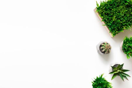 Photo for Artificial succulent and grassy plants in various pots on white  with free space, top view - Royalty Free Image