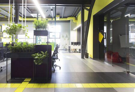 Photo pour Co-working office in loft style with green live plants, no workers, unemployment, quarantine - image libre de droit