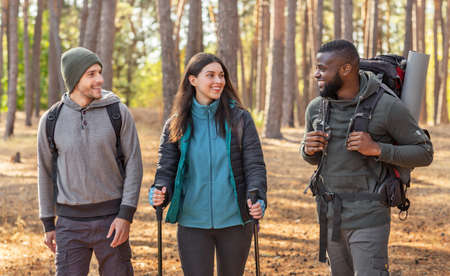 Photo for Multiracial group of hikers with backpacks walking by forest, having conversation - Royalty Free Image