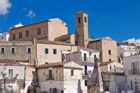 Panoramic view of Monte SantAngelo  Puglia  Italy