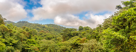 Panoramic view to the valley of Monteverde Cloud Forest Reserve - Costa Rica
