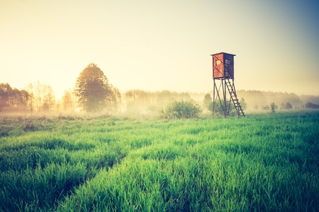Beautiful morning landscape of foggy meadow with raised hide. Photo with vintage mood effect.