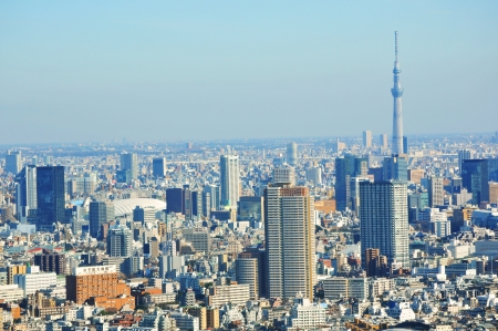 Tokyo, Japan - 28 Dec, 2011: Aerial view of the Japanese capital city seen from the Tokyo Metropolitan Government building