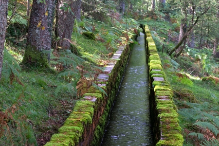 irrigation ditch for water channeling