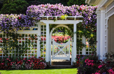 Photo for Botanical garden white fence with gate and blooming flowers - Royalty Free Image