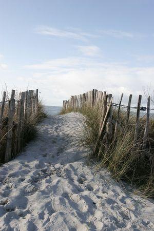 it is fences on coastline