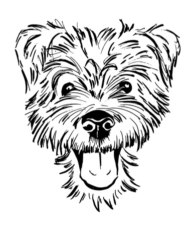 Illustration for dog breed terrier, smiling dog face, portrait, sketch, black and white vector illustration - Royalty Free Image