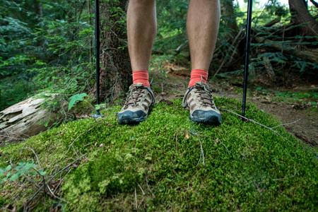 Foto de legs of the traveler in hiking boots with trekking poles in the forest - Imagen libre de derechos