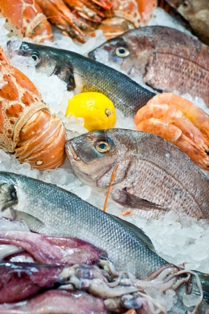 Fresh seafood displayed on the market