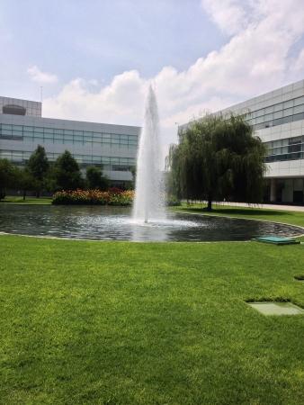 Water between office