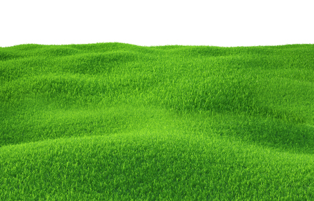 Photo for Green grass growing on hills with white background top view. 3d render - Royalty Free Image
