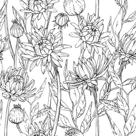 Illustration pour Seamless pattern with hand drawn gerbera flowers and brunchs - image libre de droit