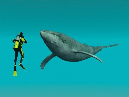 Photo pour Whale with Diver - image libre de droit