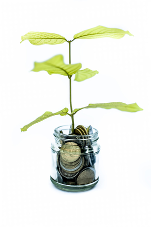 Photo pour A glass jar full of coins and plant growing through it. Concept of savings, interest, fixed deposits, pension, social security cheque, Isolated on white. - image libre de droit