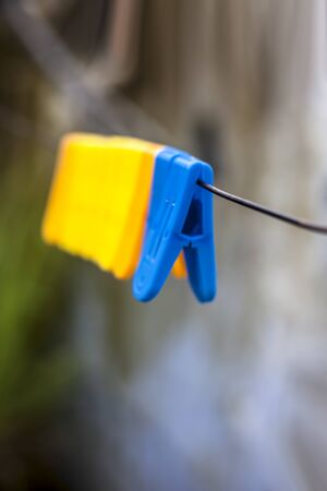 Foto per Colorful clothespin or clothes peg or clothes clip on a clothesline with a blurred background. - Immagine Royalty Free