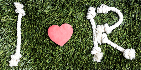 Text: I love R made from ropes on grass background