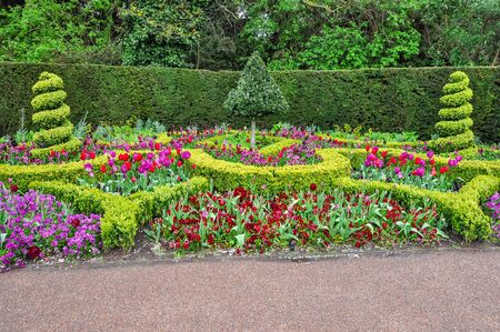 Photo for Spring flowers in Regent's park, London, UK - Royalty Free Image