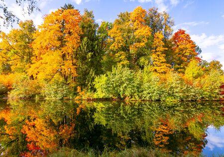 Photo pour Autumn foliage in Pavlovsky park, Pavlovsk, Saint Petersburg, Russia - image libre de droit