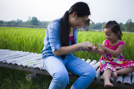 Foto per Happy Mother and her child play outdoors having fun, Green  rice field back ground. High resolution image gallery. - Immagine Royalty Free