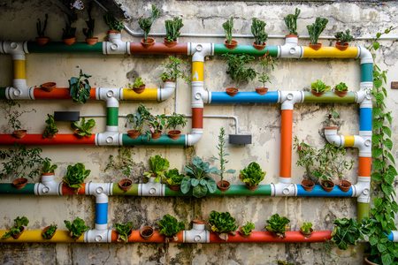 Urban Gardening - colorful pipes filled with salad and plants