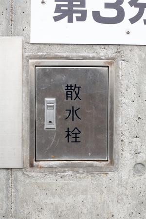 Miyuki3170500205