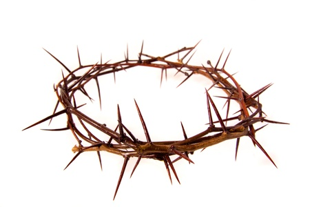 Crown of thorns isolated on white background, copy spase. Christian concept of suffering.