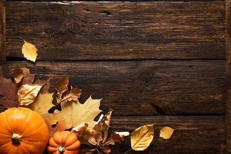 Foto de Thanksgiving or Autumnal holiday background, top view, copy space. Autumnal holiday composition with pumpkins, nuts, yellow leaves. - Imagen libre de derechos