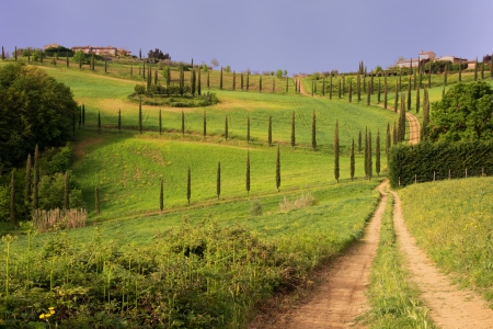 A classical view of the Tuscan country
