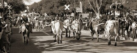 Foto für Fort Worth,Texas, Jan.4,2020 - Longhorn cattle drive at the Fort Worth Stockyards which happens ever day at 10:30 and 4:00 for free to experence. - Lizenzfreies Bild