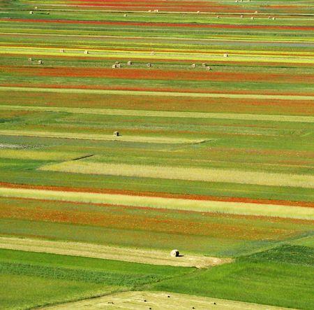 Photo pour  a bird's eye of fields,Piano Grande, Italy - image libre de droit