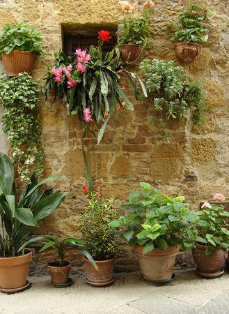 flowery wall of house in beautiful narrow italian street
