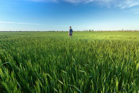 Photo pour people wheat field sunset / landscape spring field agriculture of Ukraine - image libre de droit