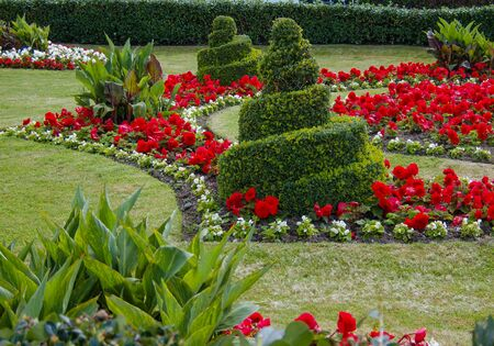 Photo for Swirls Topiary In Garden                              - Royalty Free Image