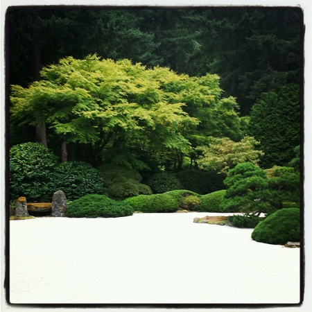 Landscape in a Zen Garden