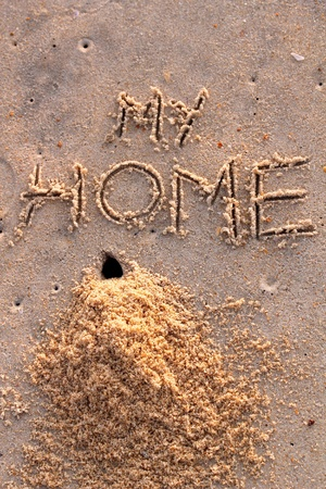 Crab hole and a pile of sand with words my home on a beach