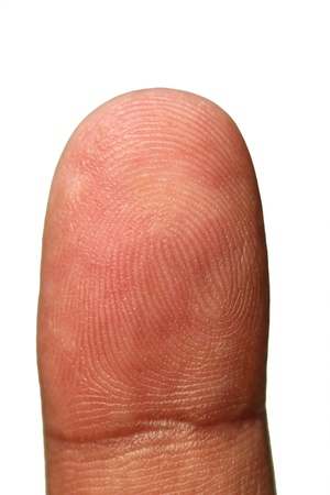 Tip of human hand showing unique finger print lines as repeating patterns forming identity of a person  The photograph is isolated on white background with clipping path