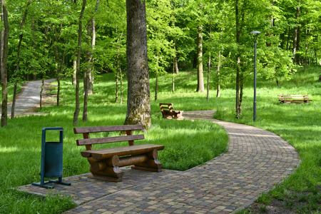 Walkway in a summer park with wooden benches for rest
