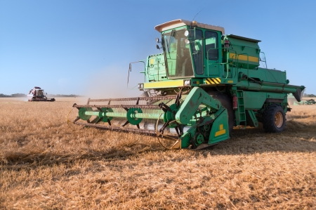 Combine harvester at the wheat field