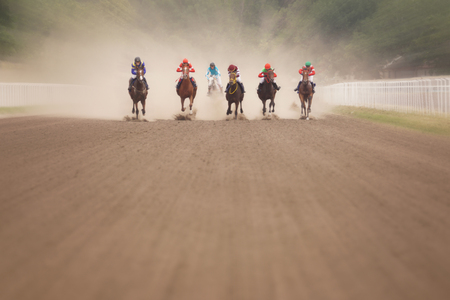 Photo pour Jockeys during horse races on his horses at line going to finish.      - image libre de droit