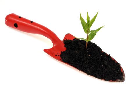 Planting concept