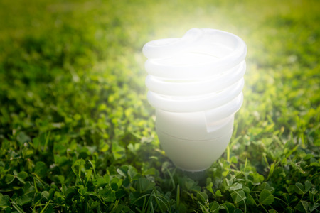 Energy saving light bulb on the grass