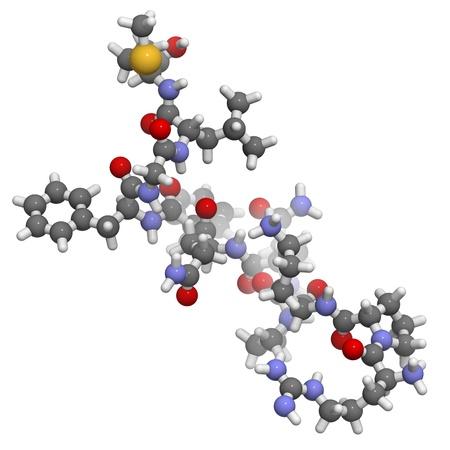 Chemical structure of substance P. This neuropeptide plays a role in pain sensation and inflammation.