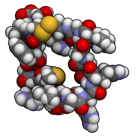 Chemical structure of a molecule of atrial natriuretic peptide (ANP) or factor (ANF), also called atrial natriuretic hormone (ANH), Cardionatrine, Cardiodilatine (CDD) or atriopeptin. ANP is a peptide hormone that has multiple effects and plays an importa