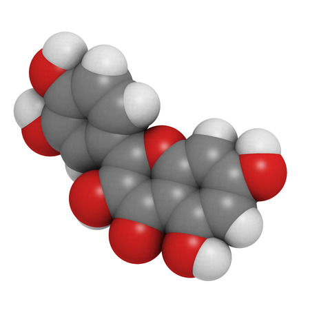 Quercetin flavonoid molecule. Found in many plants. May be beneficial in antiviral therapy and in the treatment of inflammation. Atoms are represented as spheres with conventional color coding: hydrogen (white), carbon (grey), oxygen (red).
