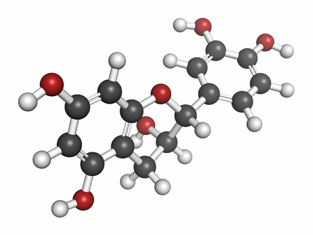 Epicatechin (l-epicatechin) chocolate flavonoid molecule. Atoms are represented as spheres with conventional color coding: hydrogen (white), carbon (grey), oxygen (red).