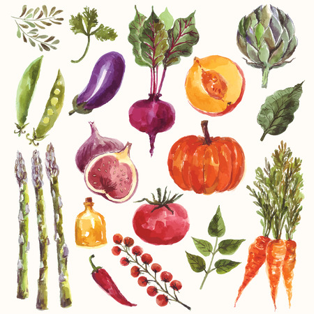 Vector watercolor set: vegetables and fruitのイラスト素材