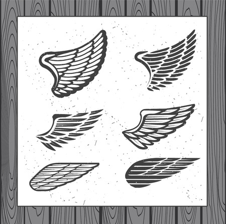 Decoration Elements for Label, Logos, Emblems and Icons. Vector Isolated Tattoo Feathers. - stock vector