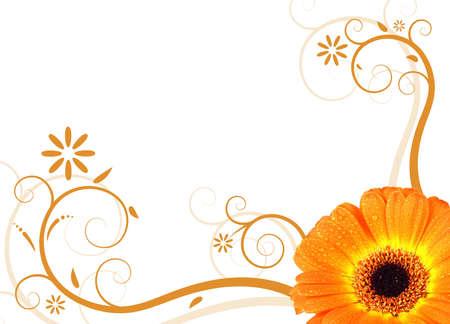 fresh orange gerbera blossom with illustrated floral design