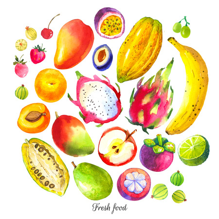 Set of different fruits: plum, guava, gooseberry, apricot, passion fruit, dragon fruit, durian, mangosteen, mango, cocoa fruit. Fresh organic food.